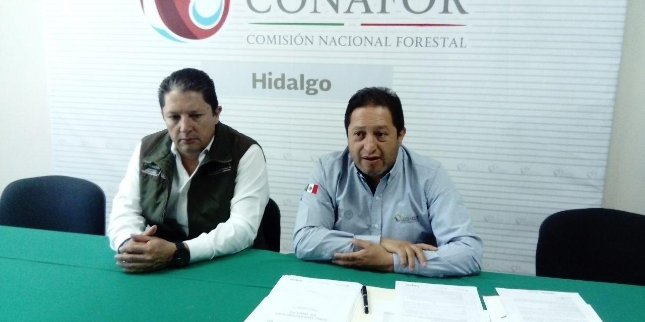 Realizarán Foro de Sustentabilidad de Hidalgo