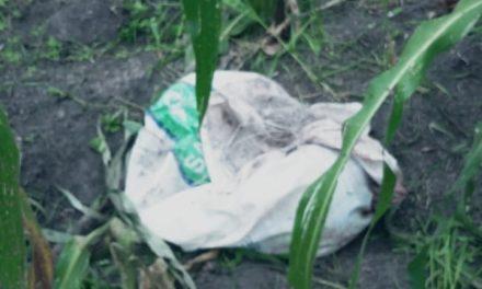 Encuentran cuerpo desmembrado en Tepeji