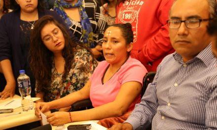 Existen irregularidades en proceso contra Arturo Aparicio: Flor Ibarra