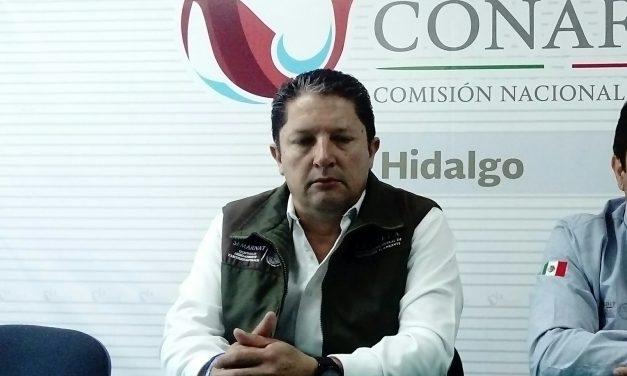 Acaxochitlán, municipio con más denuncias por tala de árboles