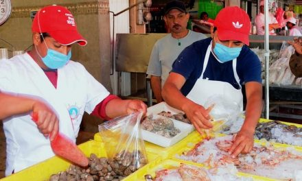 Tepeapulco inicia campaña de salud dirigida a comercios