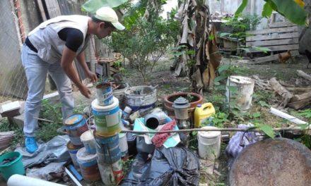 Van 311 casos de dengue en Hidalgo