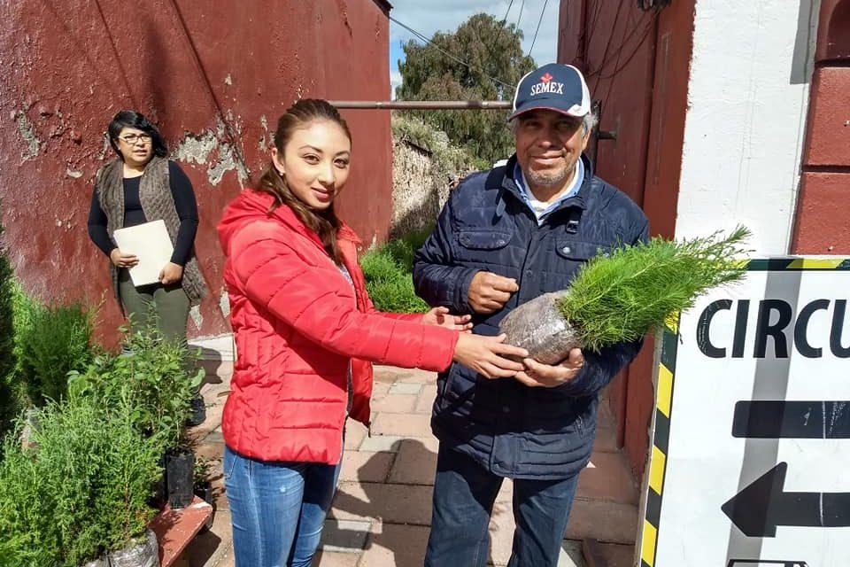 En Tepeapulco cambian árboles por kilos de despensa