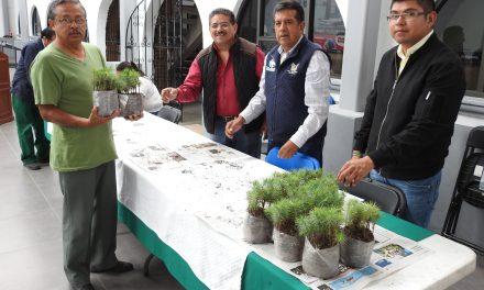 Reforestan Villa Ocaranza en Tolcayuca