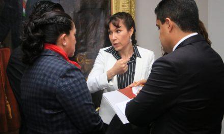 Pérez Perusquía afirma que ella preside la junta de gobierno