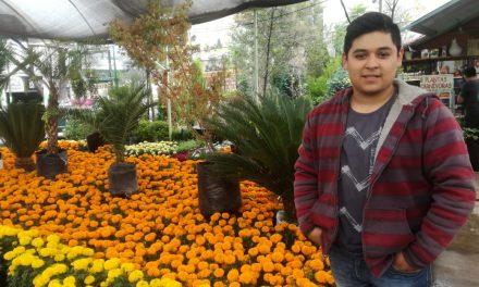 Comienza venta de flores de cempasúchil