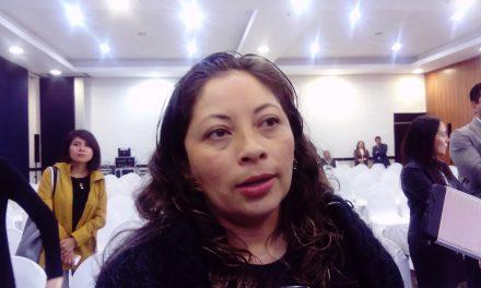 IEEH planea campañas de educación cívica