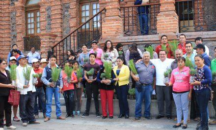 Inicia Programa de Reforestación en Villa de Tezontepec