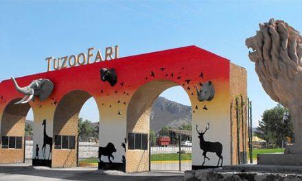 Tuzoofari cuenta con más de mil animales
