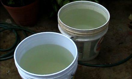 Ciudadanos califican de pésimo el servicio de agua potable