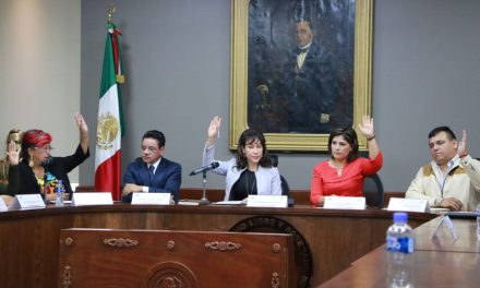 María Luisa Pérez Perusquía presidirá comisión de Recursos Naturales