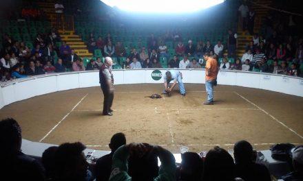 Diputado de Morena propone declarar las peleas de gallos como patrimonio cultural