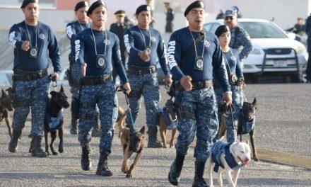 Sólo el 20% de los policías cuentan con formación académica de nivel superior