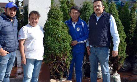 Implementan programa de venta de árboles navideños en Zapotlán
