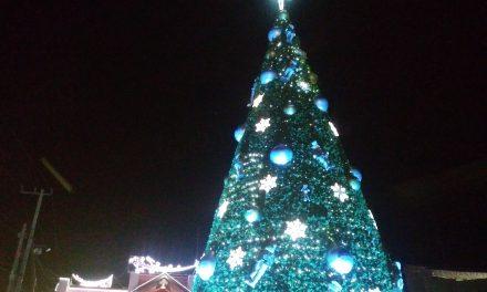 Encienden árbol de navidad en Mineral de la Reforma