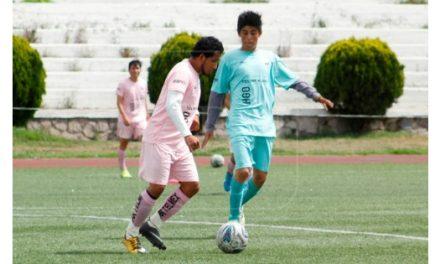 Hidalgo, sin Liguilla en Copa Telmex 2018