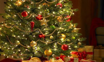 PC emite recomendaciones sobre colocación de árboles de navidad