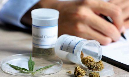 Presidente de Coparmex Hidalgo a favor del uso de marihuana medicinal