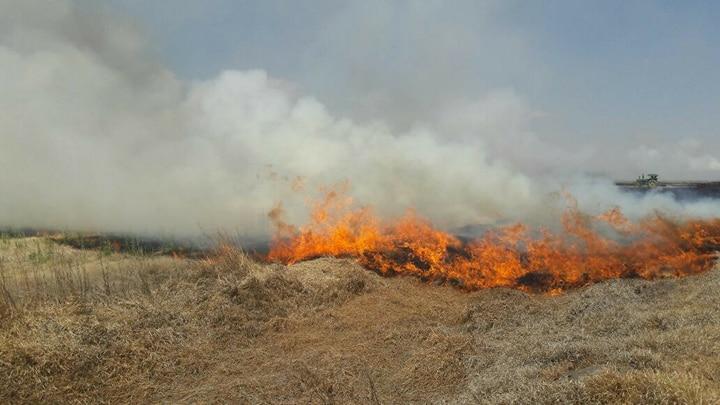 Ante altas temperaturas, PC exhorta a extremar precauciones para evitar incendios