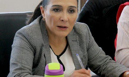 Se requiere atención inmediata a violencia contra mujeres: Érika Rodríguez
