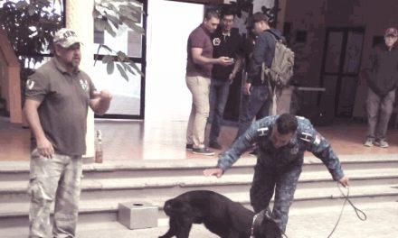 Certifican a perros policía de la SSPH en congreso internacional