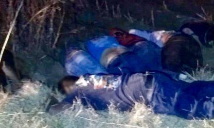 Encuentran a siete personas muertas en Nopala, por impactos de bala