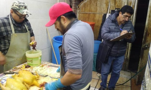 En Tulancingo pondrán en orden centros de sacrificio de pollos