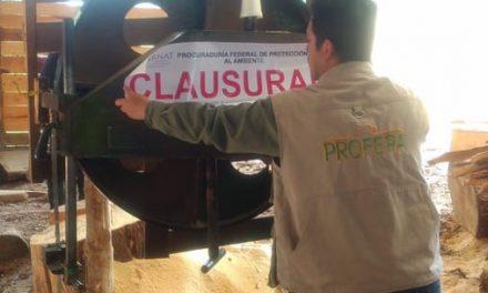 Clausura Profepa dos centros de transformación de materias primas forestales