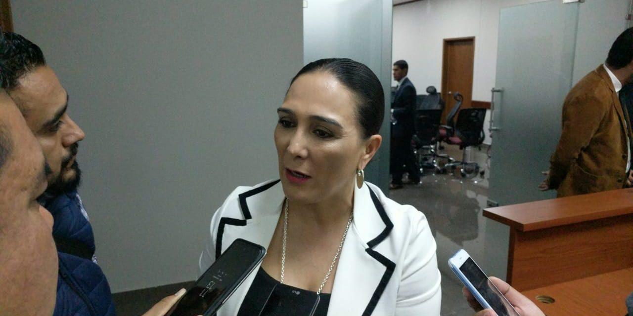 Erika Rodríguez conmina a respetar los tiempos de elección para la dirigencia nacional