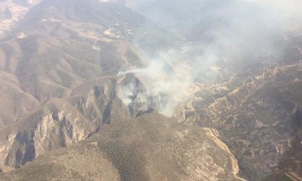 Se registraron 13 incendios forestales en Hidalgo durante Semana Santa