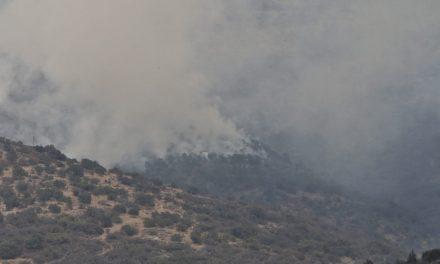 Atienden incendio en Mineral del Monte