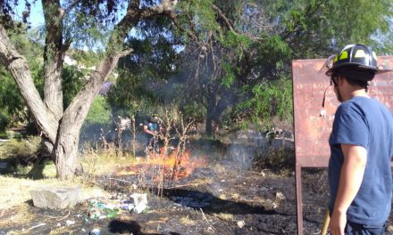 Atiende Protección Civil de Tula reportes de incendio