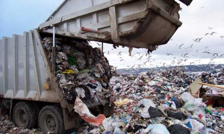 Regidora acusa que no hay proyecto para atender problema de la basura de Pachuca