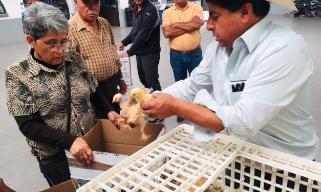 Entregan paquetes de aves de traspatio en Tolcayuca