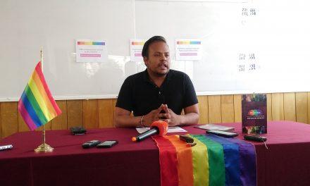 Podrían sancionar a diputados que no apoyaron aprobación del matrimonio igualitario