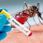 Hidalgo suma 159 casos de dengue