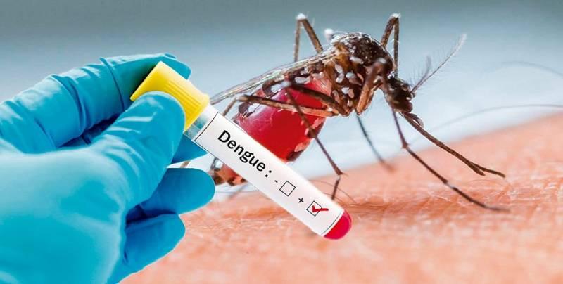 Suma Hidalgo 253 casos de dengue