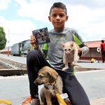 Realizan concierto con causa para adopción de perros