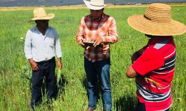 Sector agrario vigilará comportamiento de servidores públicos por elecciones