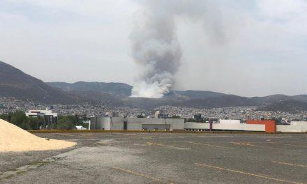 Incendio consume más de 10 hectáreas