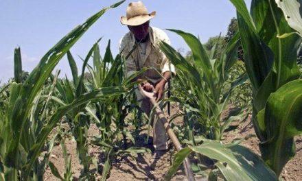 300 ejidatarios de San Agustín Tlaxiaca han sido despojados de sus tierras
