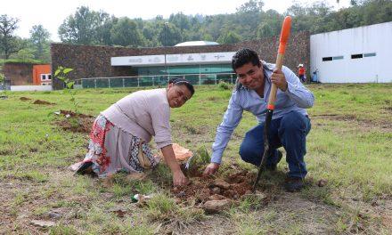Alumnos de la UICEH realizan reforestación
