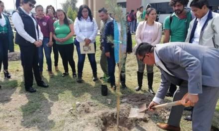 UPE implementa programa para promover cultura ambiental