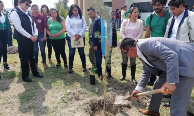 UPE implementa programa para promover cultura ambiental