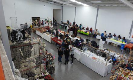 Coordinan acciones de Seguridad en Feria Patronal de Tolcayuca