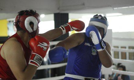 Llega a su fin Torneo de Barrios de Box en el parque Hidalgo