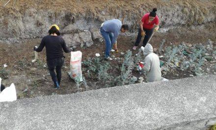 Jóvenes de Villa de Tezontepec se unen en pro del medio ambiente