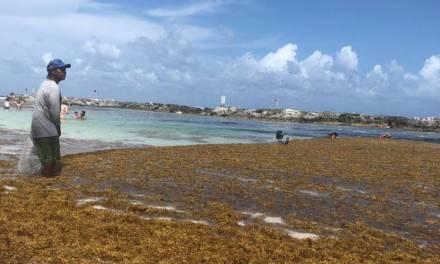 El sargazo en Quintana Roo es un asunto menor, asegura Amlo