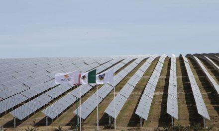 Inauguran Central Fotovoltaica de 410 hectáreas, en Hidalgo