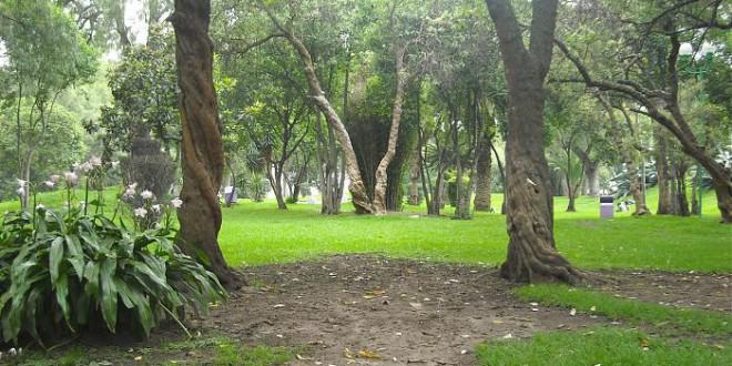 En Pachuca no se respetan las áreas verdes